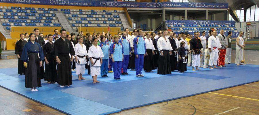 Gala artes marciales